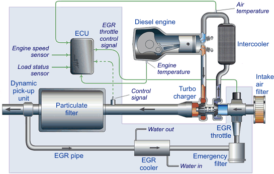 EGR Systems & Components